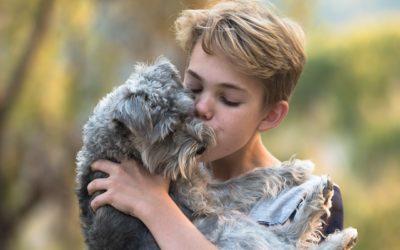 Warum Haustiere gut für Kinder sind